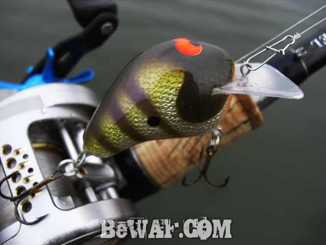 biwako bassfishing guide 7