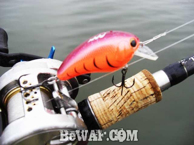 biwako bassfishing guide 9