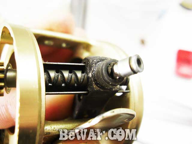calcutta conquest 50 xt overhaul-2