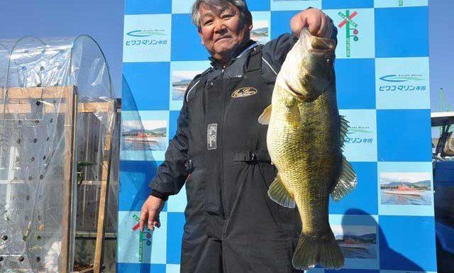 tweet釣果:カットテールで 59cm!! (琵琶湖) 1