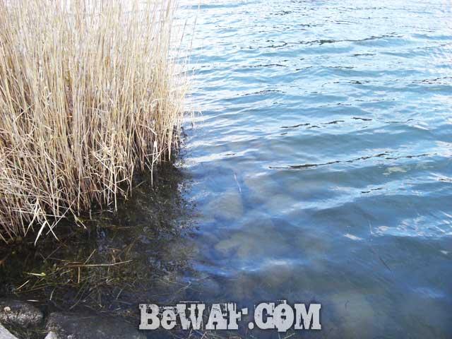setagawa biwako bass chouka 2