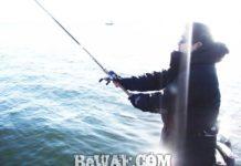琵琶湖バスフィッシングガイドリポート ~加納様~ 00cm 9
