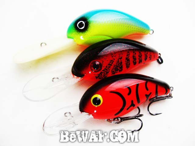 biwako bass haru turikata guide 11