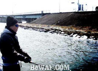 琵琶湖バスフィッシングガイドリポート ~里様~ 00cm