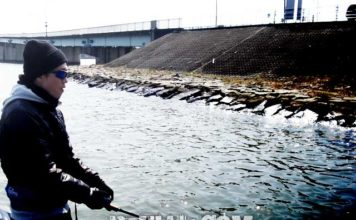 琵琶湖バスフィッシングガイドリポート ~里様~ 00cm 7