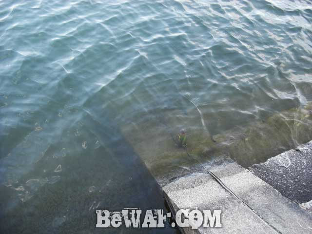 biwako bass turi ninki blog 8