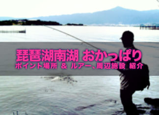 琵琶湖南湖バスフィッシング(おかっぱり ポイント場所紹介)