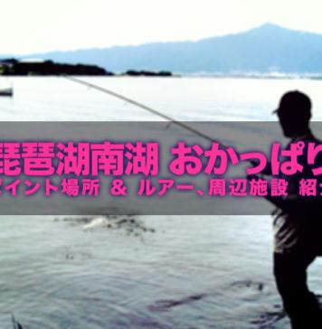 琵琶湖南湖バスフィッシング ポイント写真