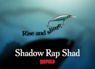 Shadow Rap Shad がデビュー!! (RAPALA USA)