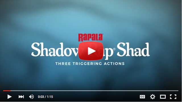 rapala-shadow-rap-shad