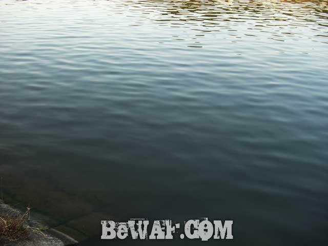setagawa bass turi blog chouka 2