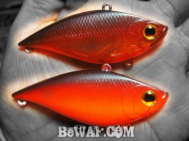 setagawa bass turi blog chouka 6