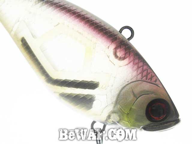 setagawa bass turi blog chouka 7