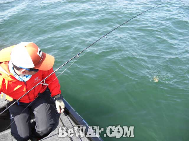 biwako bass fishing guide yasui 10
