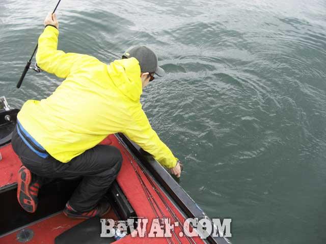 biwako bass fishing guide yasui biwako blog4