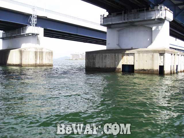 biwako bass fishing guide yasui nedan ninki blog 10