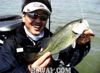 琵琶湖バスフィッシングガイドリポート~大島様~ 42cm