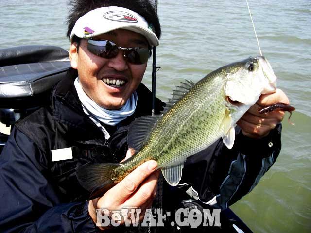 biwako bass guide blog yasui shousai 12