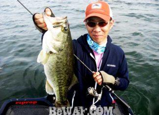 琵琶湖バスフィッシングガイドリポート~今野様~ 49cm