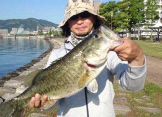お客様からの釣果:川様~ 琵琶湖オカッパリで50アップ!! (2016年)