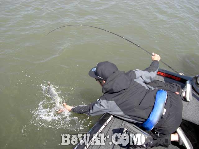 riprap guide service biwako bass blog 7