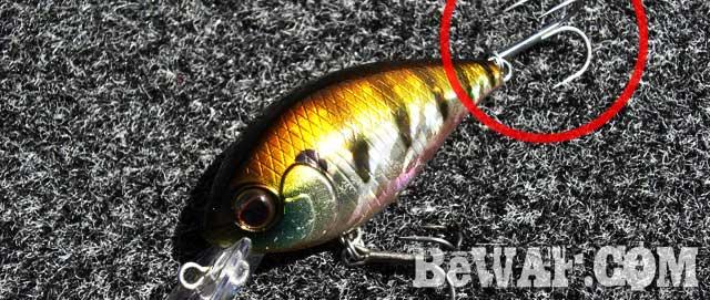 riprap guide service biwako bass blog 8