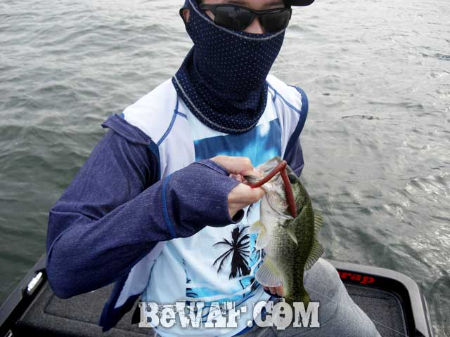 biwako bass chouka shousai 13