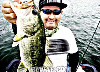 琵琶湖バスフィッシングガイドリポート~加納様~ 42cm