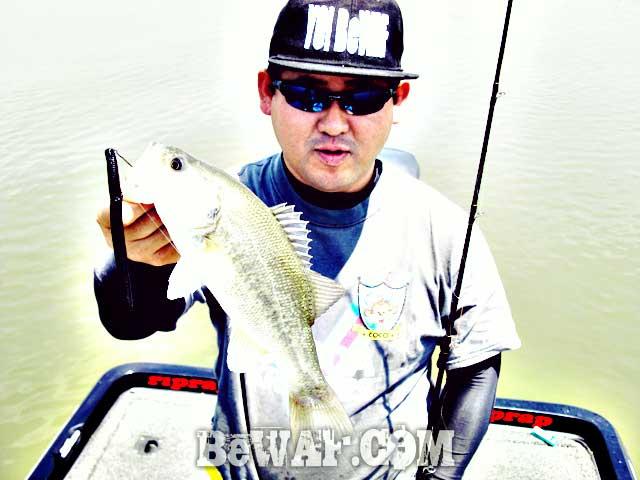 biwako guide chouka shosai 5