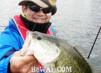 琵琶湖バスフィッシングガイドリポート ~加藤様~ 42cm