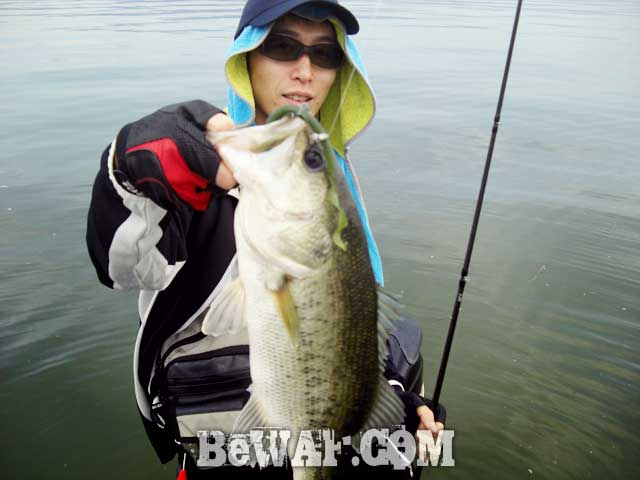 11-biwako-bass-guide-chouka-ayu-patern