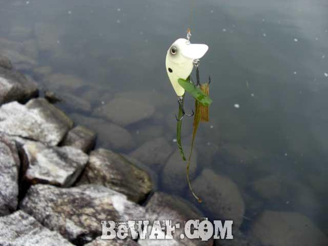 4-setagawa-bass-turi-ninki-chouka