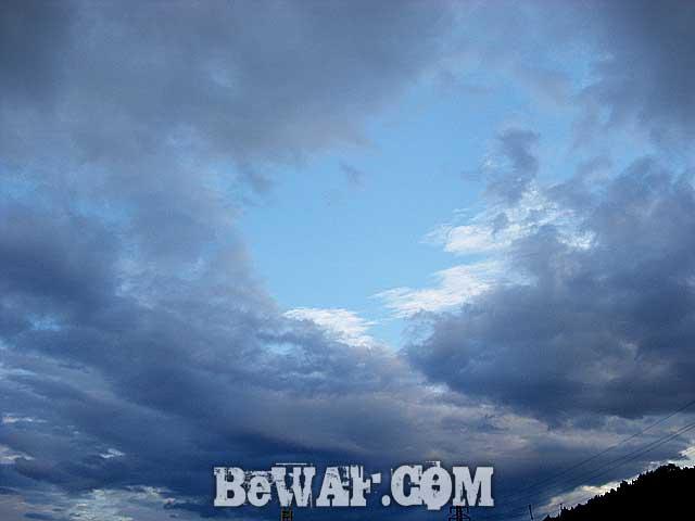 5-biwako-wfg-jb-tonegawa-bass-fishing