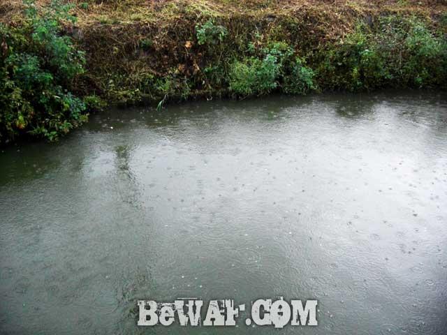 5biwako-bass-chouka-shousai-frog-basho