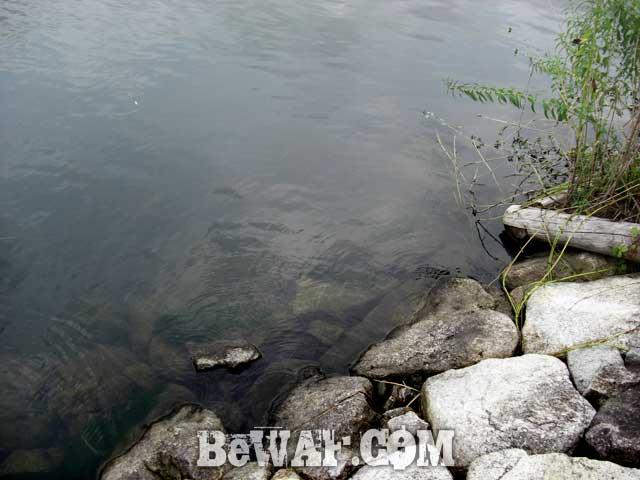 6-biwako-bass-chouka-shousai-ninki-blog