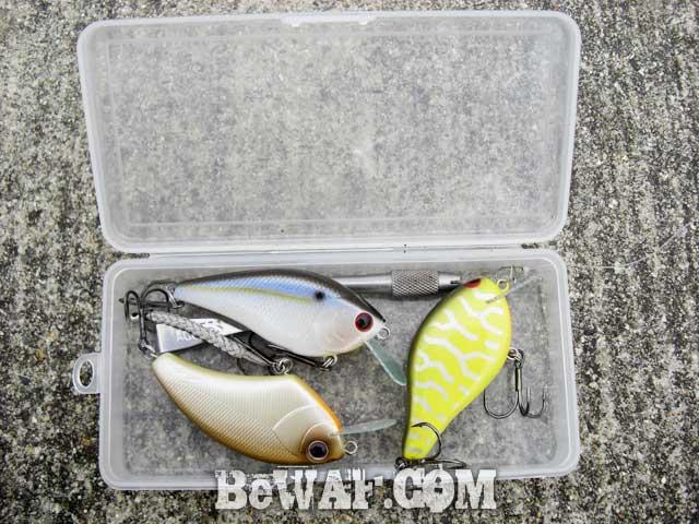 6setagawa-bass-turi-blog-ninki-guide-boat