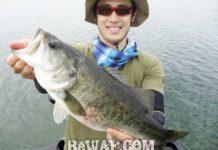 琵琶湖へ (9月16日) 野洲川沖で47cm 他 7
