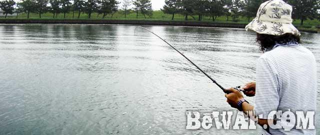 8biwako-yasukawa-dekabass-blog-bass