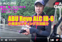 オカッパリ:ALC-IB6セッティング方法 (小森嗣彦) 1