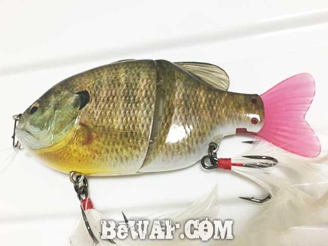 biwako bass chouka shousai-2
