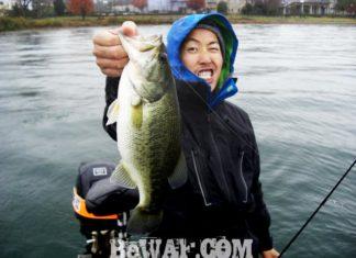 琵琶湖バスフィッシングガイドリポート ~竹中様~ 41cm