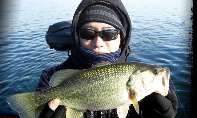 琵琶湖バスフィッシングガイドリポート ~里様~ 36cm 7