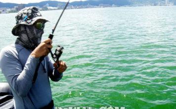 琵琶湖バスフィッシングガイドリポート ~竹中様~ 36cm 14
