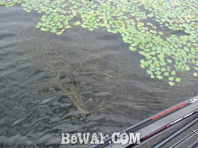 biwako basss fishing guide yasui nedan ninki 10
