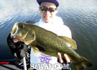琵琶湖バスフィッシングガイドリポート ~里様~ 49cm