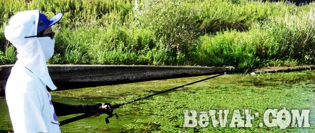 biwako--basss-fishing-guide-yasui-nedan-ninki-24