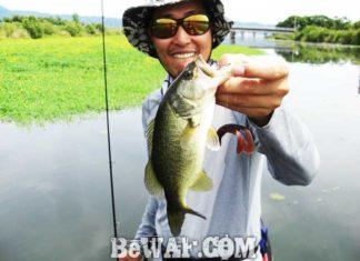 琵琶湖バスフィッシングガイドリポート~竹中様~ 38cm