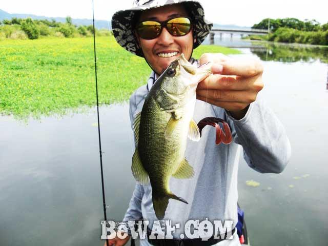 biwako black bass turi yasui guide 12