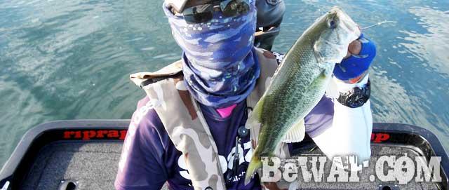 biwako-guide-99-okamoto-biwako-yausi-17