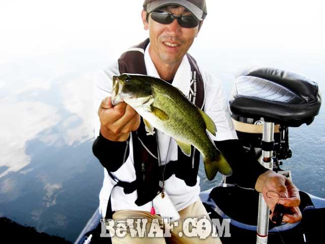 biwako guide yasui umai black bass blog 10